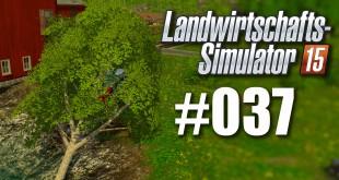 Landwirtschafts-Simulator 15 – Geld beschaffen durch Forstarbeit