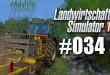 Landwirtschafts-Simulator 15 #034 – Nachpflanzen