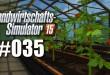 Landwirtschafts-Simulator 15 #035: Das Gewächshaus!