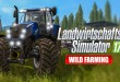 LANDWIRTSCHAFTS-SIMULATOR 17 #15: Saatgut in den Kipper! LS17 Multiplayer Wild Farming