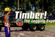 FORSTMASCHINEN: Profis im Wald – Der neue Forstwirtschaftssimulator! I Timber! The logging experts