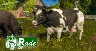 LS17: GEMEINDE RADE #46: Die ersten Kühe grasen auf der Wiese! | LANDWIRTSCHAFTS-SIMULATOR 2017