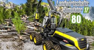 LS17 Forst #80 – Der XXL-Holzhaufen! I LANDWIRTSCHAFTS-SIMULATOR 17